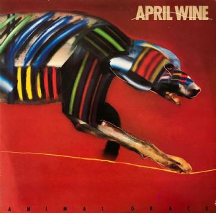 April Wine - Animal Grace (LP) (VG-/G++)